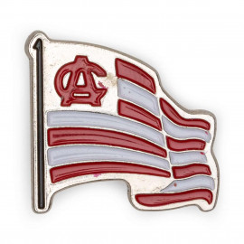 AC FLAG PIN